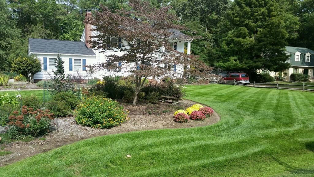 Affordable lawn care services provided by Prestigious Turf Management of Yorktown Virginia