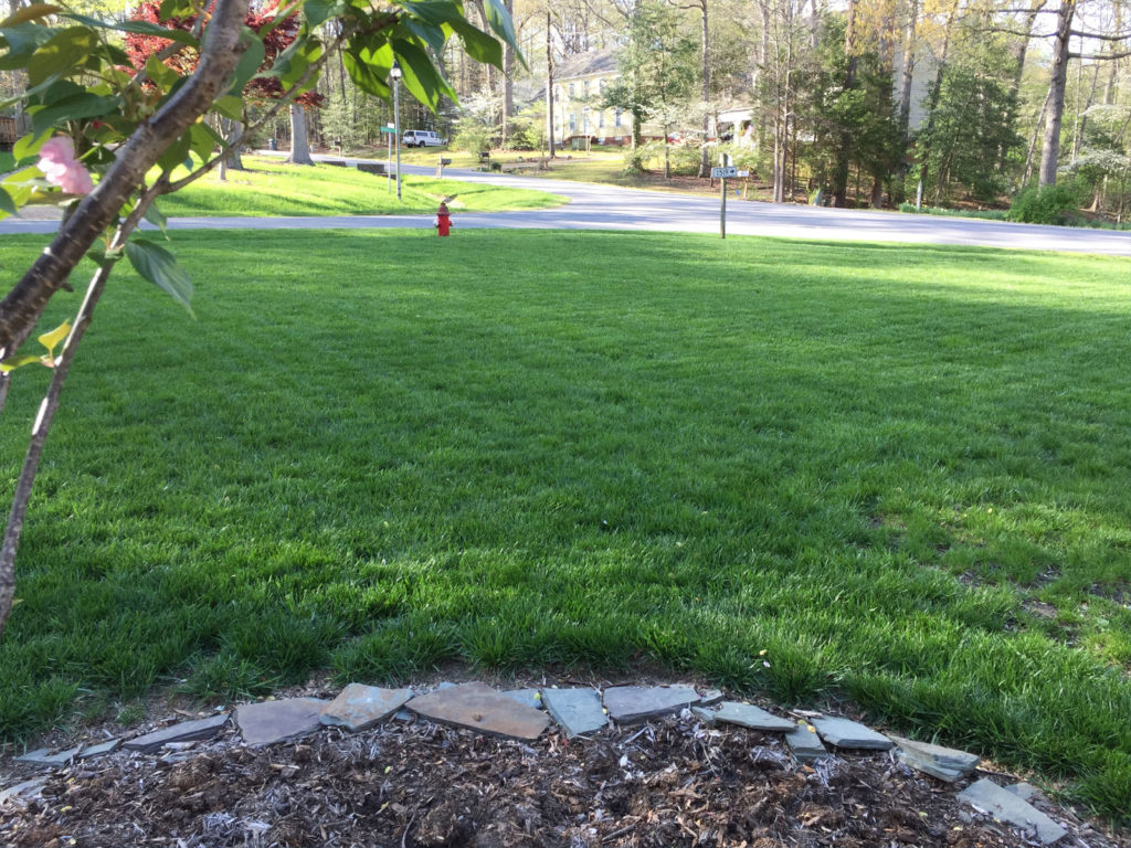 Greener lawn with the Prestigious Turf Management Program - Yorktown VA