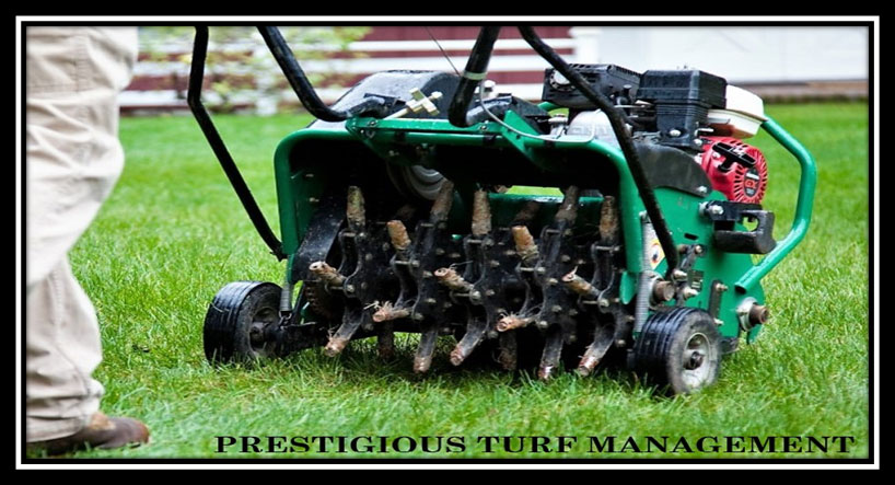 Core Aeration by Prestigious Turf Management - Yorktown Lawn Care Specialists