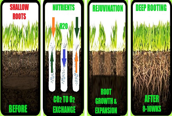 Soil Testing by Prestigious Turf of Yorktown VA