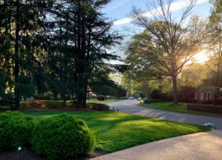 Healthy Green Lawns by Prestigious Turf Management - Yorktown Virginia
