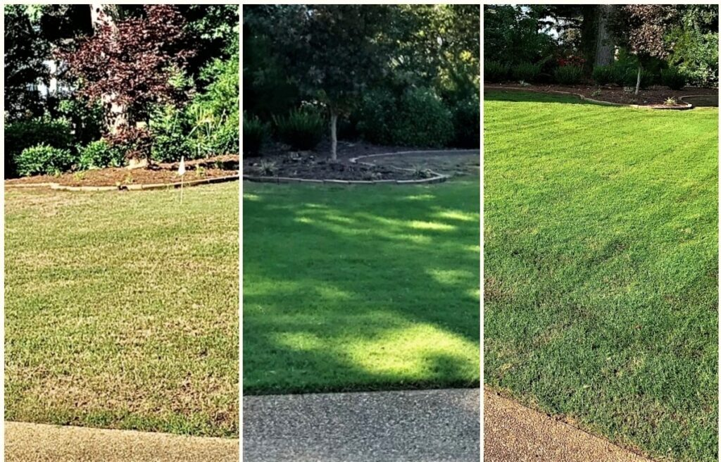 Lawn care Service - fertilization - Weed Control - Seeding - Aeration by Prestigious Turf Management