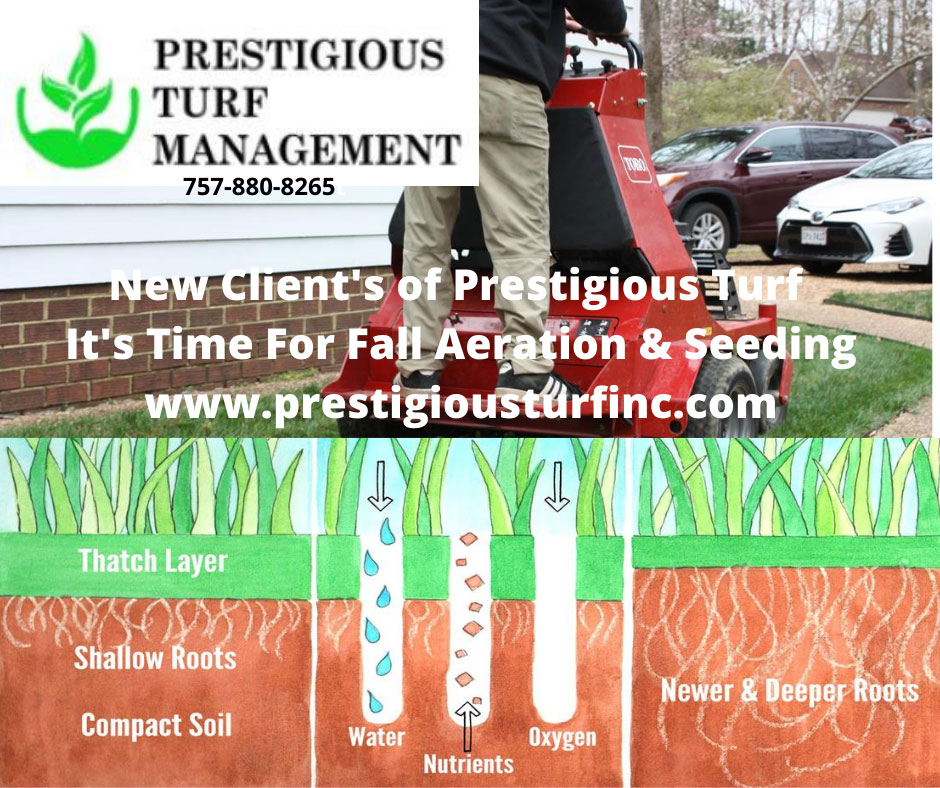 Aeration & Seeding - Spring & Fall - Prestigious Turf Management - Yorktown VA