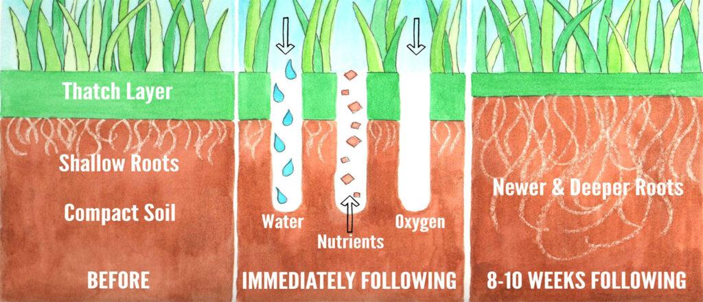 Lawn Aeration by Prestigious Turf Management - Yorktown VA
