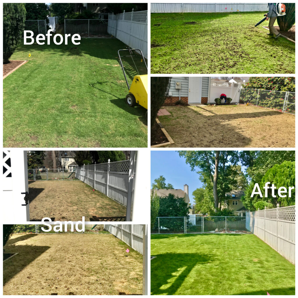 Lawn Treatment by Prestigious Turf Management - Before & After